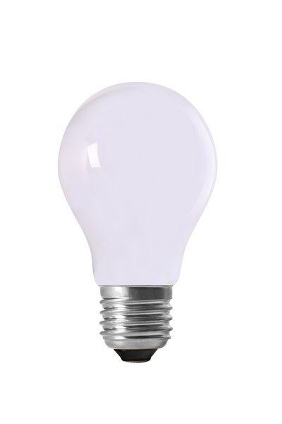 Ljusslinga Bright Light, paket OPAL LED lampor. Ljusslinga i grov svart, platt gummikabel med hållare för 10 st lampor. Levereras med 10 st opalvita LED.